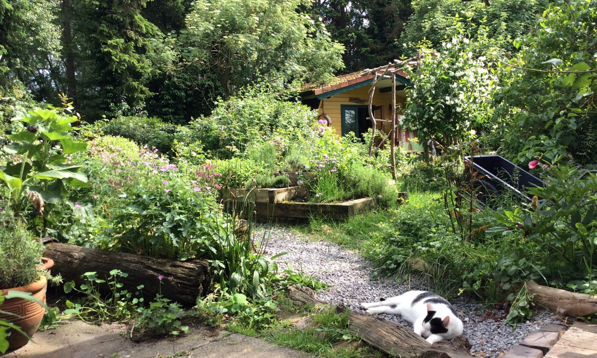 Imkes Gluecksgarten